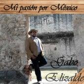 Mi Pasión Por México de Gabo Elizalde