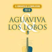 El Concierto de la Complutense (Madrid, 2018) de Aguaviva