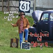 Broke Down on Highway 61 de Ron Parks and Gypsyblue