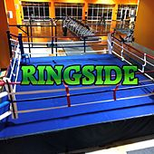 Ringside (feat. Q-Ken & Mahmood) by Misterkruger