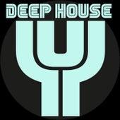 Deep House (Essential Vibe) de Antony Reale, Vinyl Convention, Mario De Lucia, Electro Blues, Tamashi, Andrea Rango, R3V3S