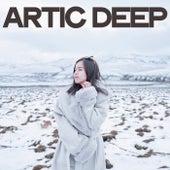 Artic Deep (Best House Music For Winter) de Various Artists
