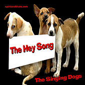 The Hey Song - Single by Singing Dogs