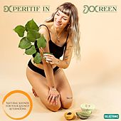 Aperitif in Green: Natural Sounds for Your Loungy Afternoons by Various Artists