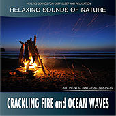 Crackling Fire and Ocean Waves: Relaxing Sounds of Nature de Healing Sounds for Deep Sleep and Relaxation