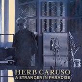 A Stranger in Paradise von Herb Caruso