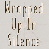 Wrapped Up in Silence de Jim Hart