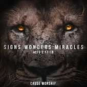 Signs Wonders Miracles de The Cause Worship