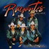 Corridos y Mas... by Los Rayantes del Valle