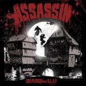 Assassin by Zer.Fleisch