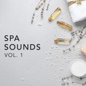 Spa Sounds Vol.1 de Various Artists