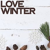 Love Winter (Lounge Music Selection) von Various Artists