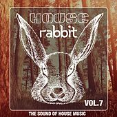 House Rabbit Vol. 7 (The Sound of House Music) by Various Artists