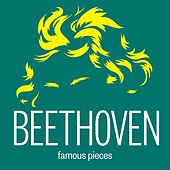 Beethoven: Works by Various Artists
