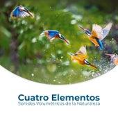 Cuatro Elementos (Sonidos Volumétricos de la Naturaleza, Sorprendentes Efectos de Sonido) de Relajación Meditar Academie