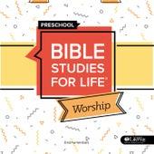 Bible Studies for Life Preschool Worship Instrumental Spring 2020 - EP by Lifeway Kids