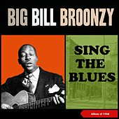 Sing the Blues (Album of 1956) de Big Bill Broonzy