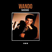 Sucessos by Wando