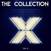 The collection X (Vol. 8) by H@k, JoioDJ, L - Tune, Mr Roy, Nikita Marasey, Pedro Duarte, Removalce, Stones