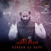 Sarkar s.a.w Aa Gaye by Sher Ali