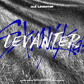 Clé : LEVANTER de Stray Kids