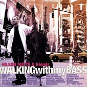 Walking With My Bass by Nilson Matta