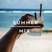 Summer Mix van Various Artists