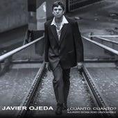 ¿Cuánto, cuánto? (Alejandro Seoane Remix Danza Invisible) de Javier Ojeda