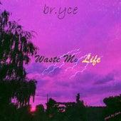 Waste My Life von Bryce