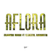 Aflora by Filosophia urbana