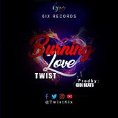 Burning Love de Twist