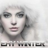 Ehy Winter (Best Selection House Music) de Various Artists