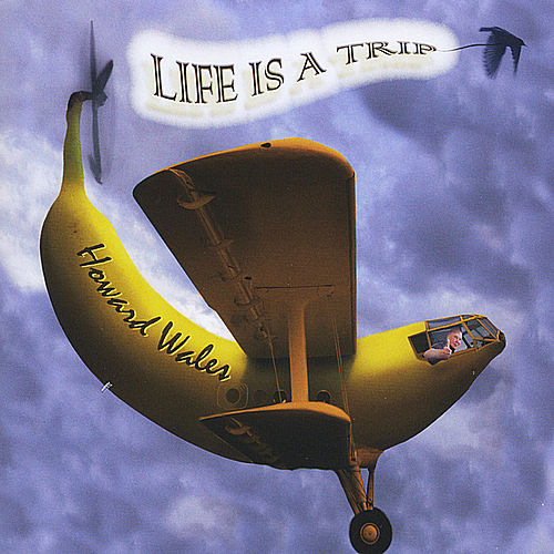 Life Is A Trip by Howard Wales
