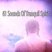 61 Sounds of Tranquil Spirit by Deep Sleep Meditation