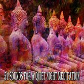 51 Sounds for a Quiet Night Meditation by Classical Study Music (1)