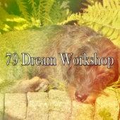 79 Dream Workshop de Water Sound Natural White Noise