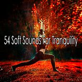 54 Soft Sounds for Tranquility by Yoga Music
