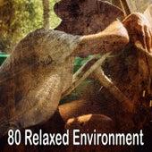 80 Relaxed Environment von Relajacion Del Mar