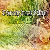 30 Serenity Sounds of Storm by Rain Sounds and White Noise