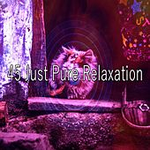 45 Just Pure Relaxation von S.P.A