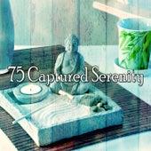 75 Captured Serenity von Music For Meditation