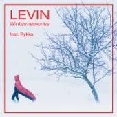 Wintermemories von Levin