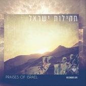 Praises of Israel de Various Artists