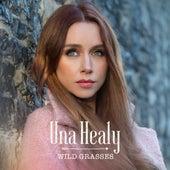 Wild Grasses by Una Healy