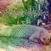 37 Stormy Rest Sound de Thunderstorm Sleep