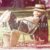 36 Riding the Storm by Rain Sounds and White Noise