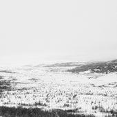 Hundrede Træer by Ed Carlsen