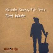 Nobody Knows for Sure de Joel Wade