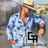 A Culpa É Sua de Gabriel Araújo