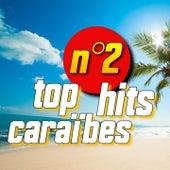 Top hits caraïbes, vol. 2 de Alex Catherine, Adriano, Harry Diboula, Dominique Panol, Volt Face, Eskiss, Ralph Thamar, Célia Delver
